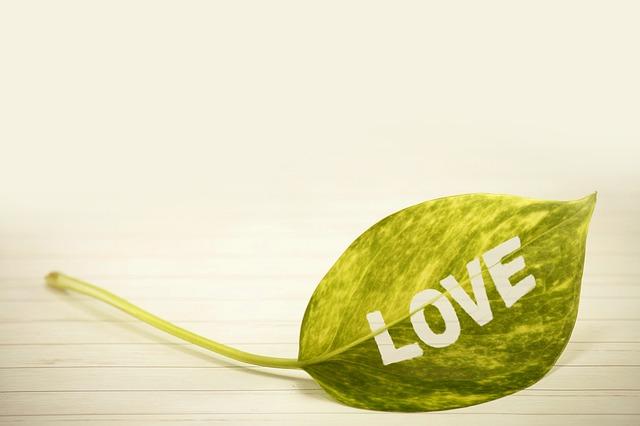 Love, Liebe, Emotion oder Gefühl?